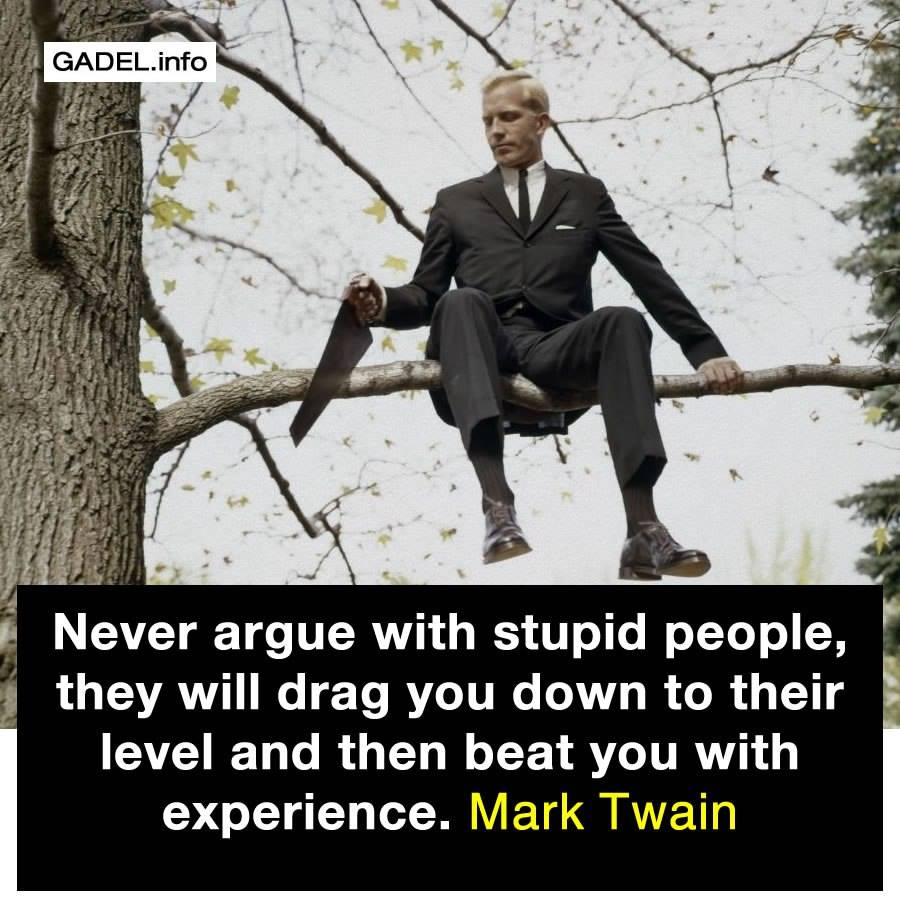 Never Argue With Stupid People Quote: Never Argue With Stupid People