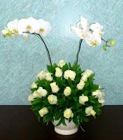 bunga mawar dan anggrek untuk ulang tahun ibu