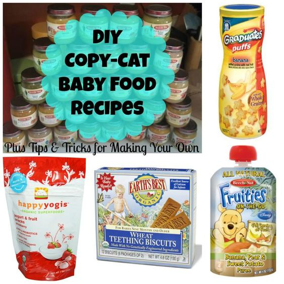 DIY Copy Cat Make Your Own Baby Food Recipes
