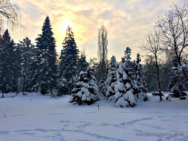 Huellas en la nieve Bulgaria