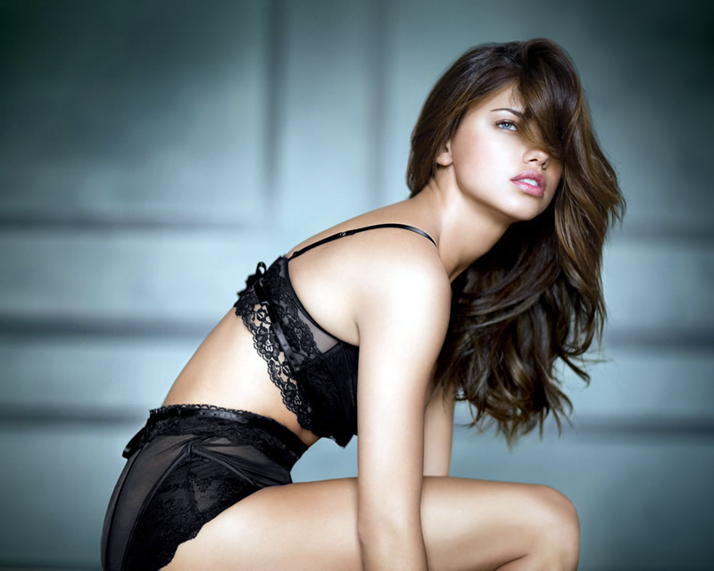 Adriana Lima, Highest Paid Model