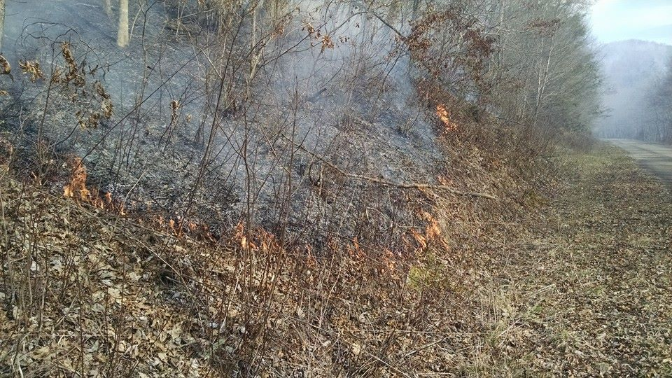 A prescribed burn in the Nantahala Ranger District