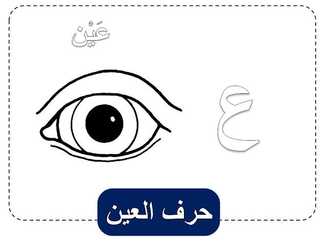 كلمات بحرف العين