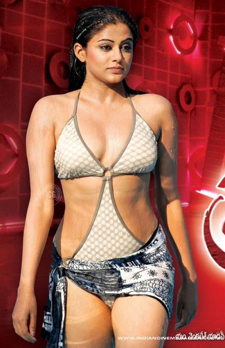 Bollywood Hot Actress In Bikini Bollywood Actress in Bikini Pics 109