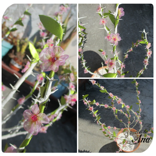 Flores con listón
