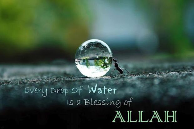 Every Drop of Water is a Blessing of Allah - Islamic Quotes