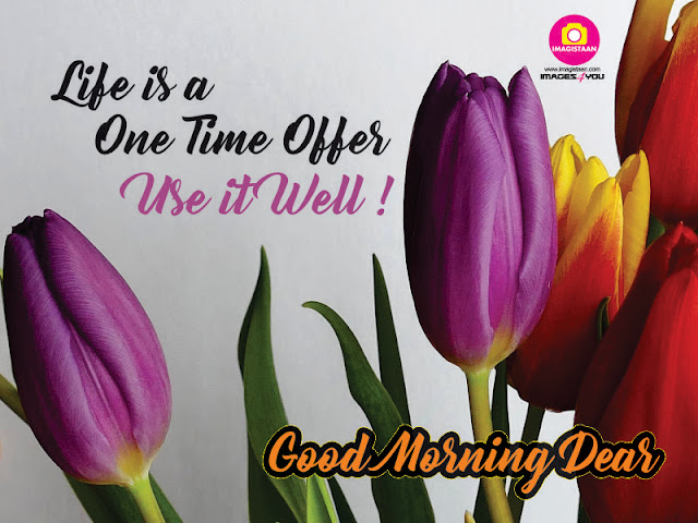 good morning hd wallpaper, images, photos, pictures 2018, good morning pic