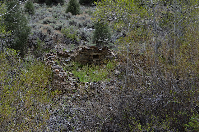 creekside dwelling