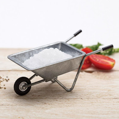 Spicebarrow Salt Holder