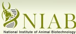 NIAB Recruitment 2017, www.niab.org.in