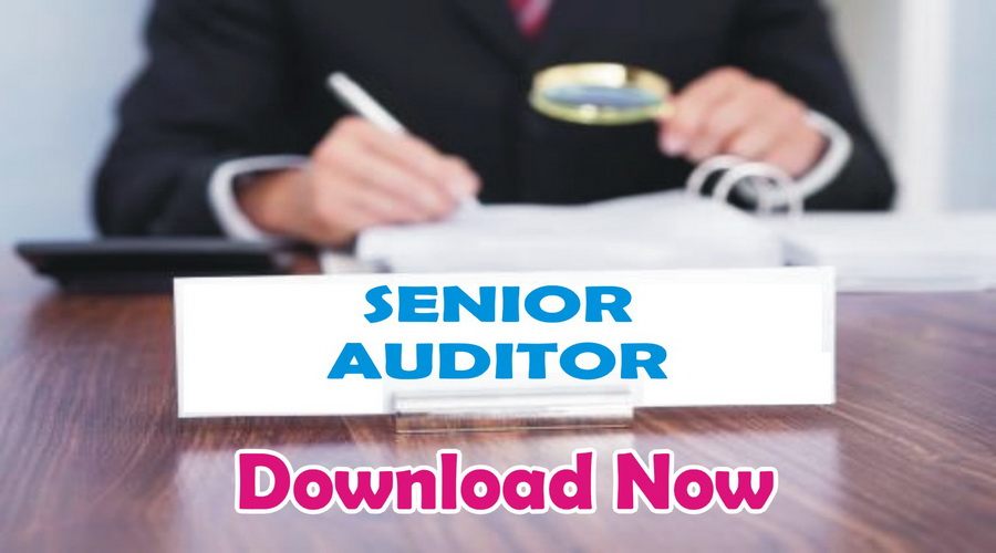 Download Accounting MCQs & Auditing MCQs Book Solved PPSC & FPSC