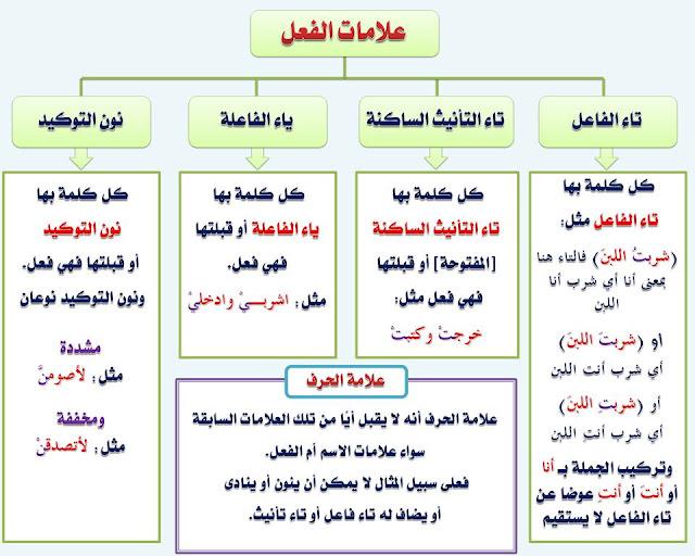 """انفراد.... كل قواعد اللغة العربية لطلاب """"ابتدائي - اعدادي - ثانوي"""" في صورة لوحات مبسطة مع الشرح والتدريبات 5"""