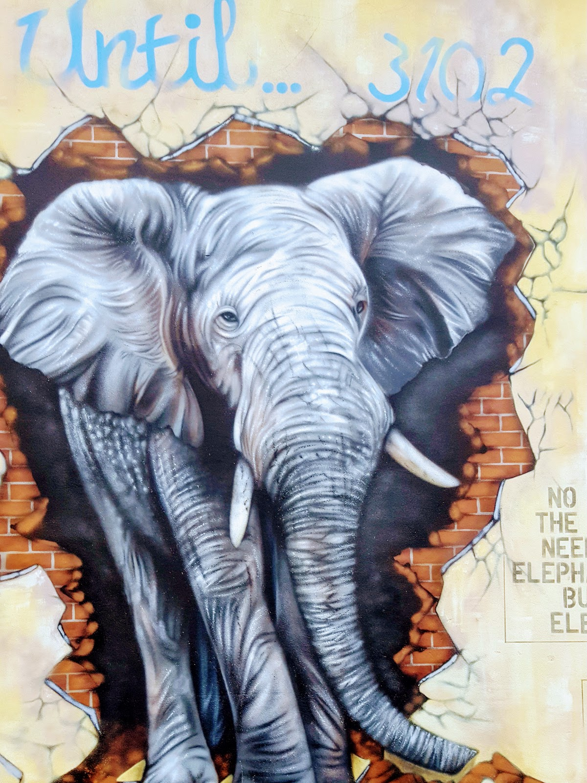 Giant Elephant Graffiti: Street Art In Loughborough