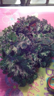 kale from backyard