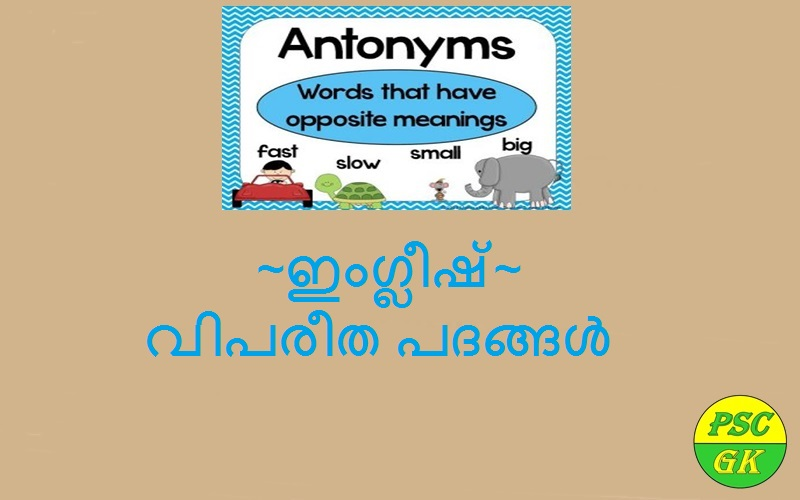 Massive List Of Antonyms In English Kerala Psc Gk