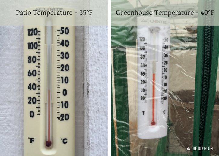 Temperature readings on patio and in greenhouse on Test 2 | The Ongoing Mini Greenhouse Experiment // WWW.THEJOYBLOG.NET