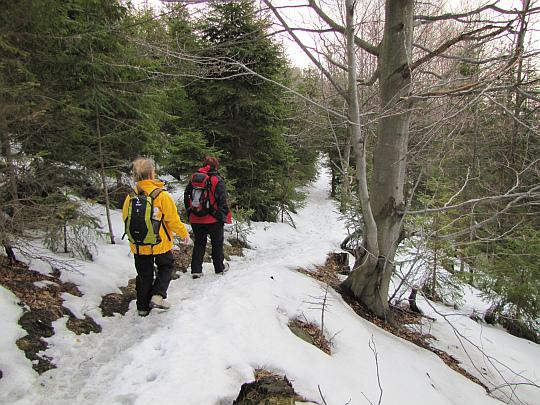 Naszą ścieżkę pokrywa niewielka warstwa śniegu.