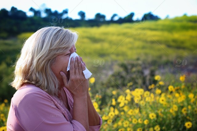 Allergy, Pollen Allergic, Home Remedies of Allergies and Sneezing