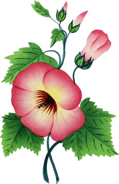flores para imprimir pintar e colorir lindas e bonitas