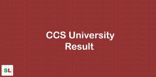 सीसीएस यूनिवर्सिटी रिजल्ट २०१९