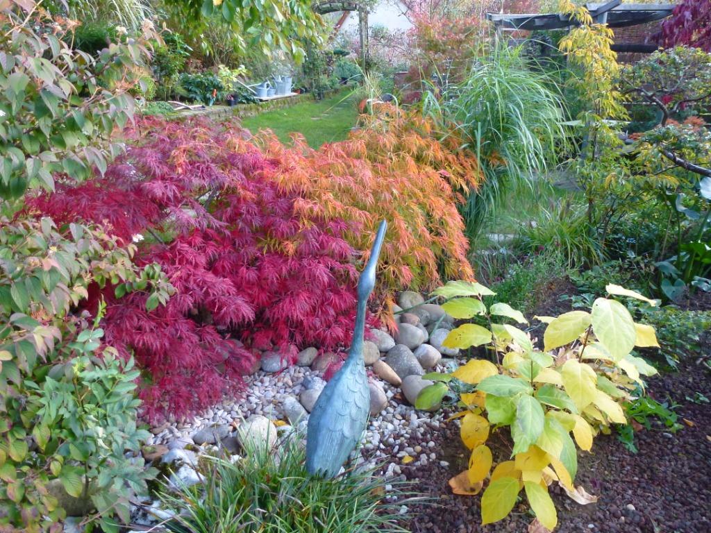 le jardin des grandes vignes couleurs d 39 automne en petits. Black Bedroom Furniture Sets. Home Design Ideas