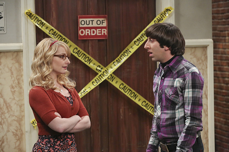 the big bang theory, bernadette, howard