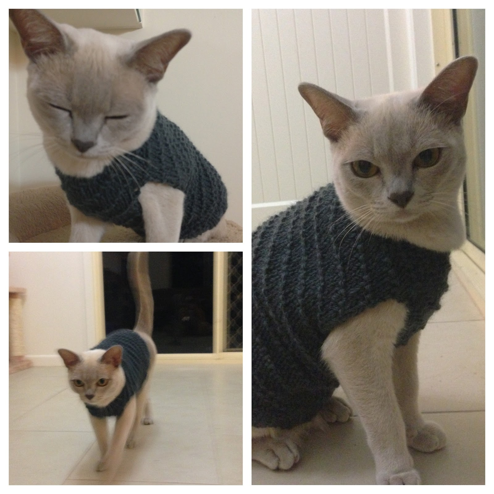 A Flood of Stitches: Crazy knitting projects - The cat jumper
