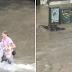 Προστατεύοντας τους σκύλους από τις πλημμύρες...