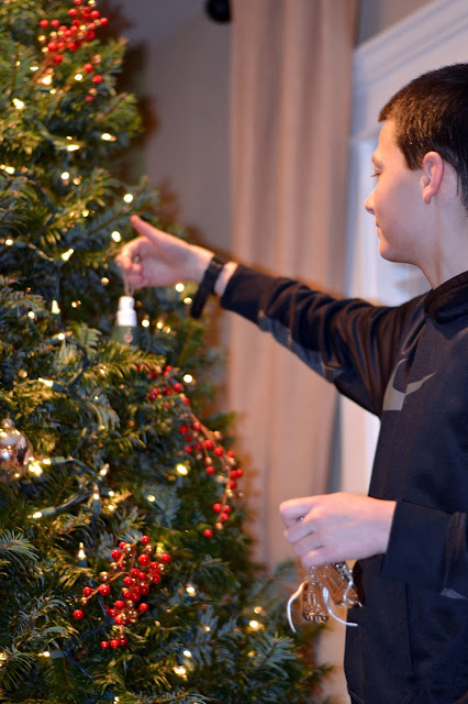 treefarm25jpg - Starting A Christmas Tree Farm
