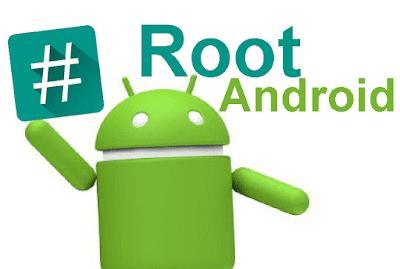 apa yang dimakud root
