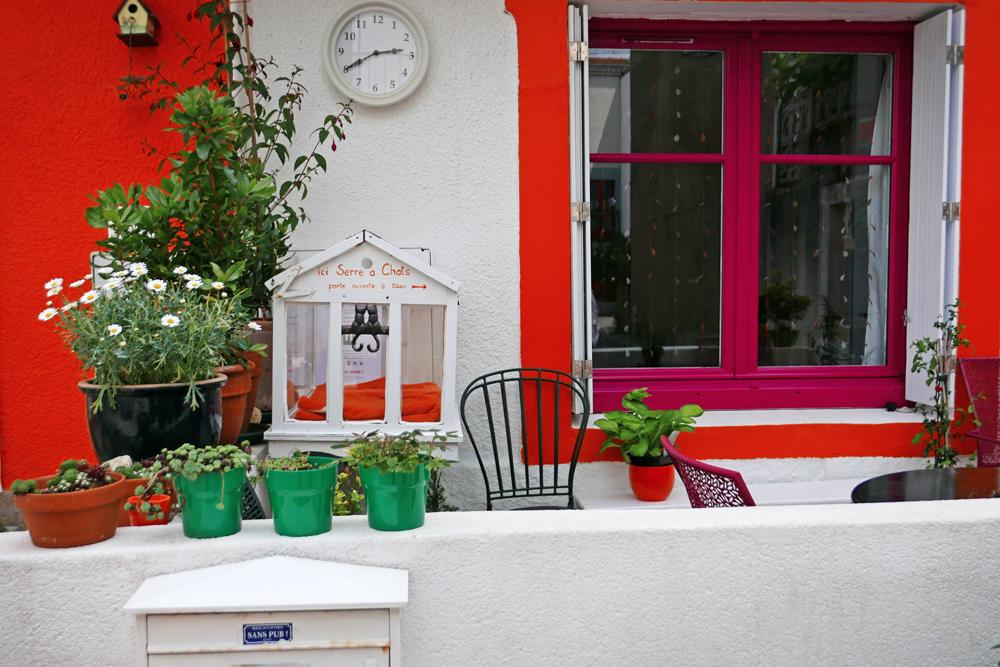 Devant une maison colorée en orange et rose vif, se trouve une serre à chats. Malheureusement, aucun chat ne s'y prélasse