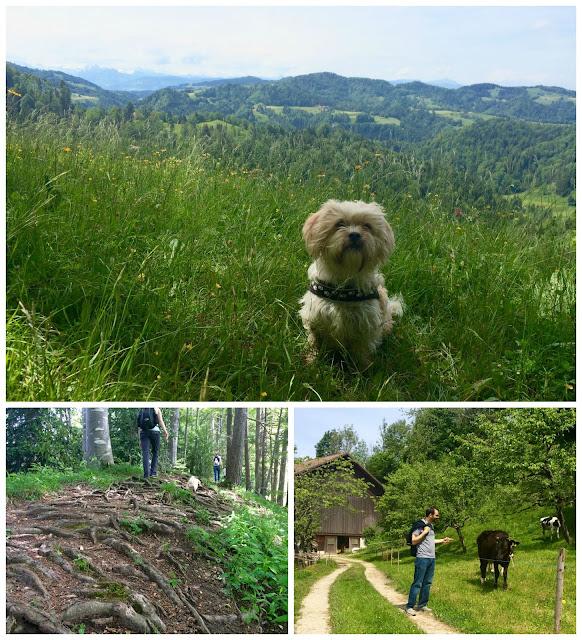 Hornli Hiking, Sleachmour Adventures