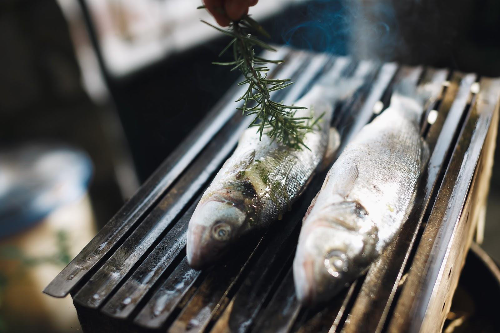 još jedno druženje s ribama