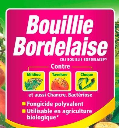 Le billet de ph nix mollah bordelais ou r v rend sarthois for Bouillie bordelaise piscine