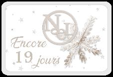Le Noël blanc de DCS - 6