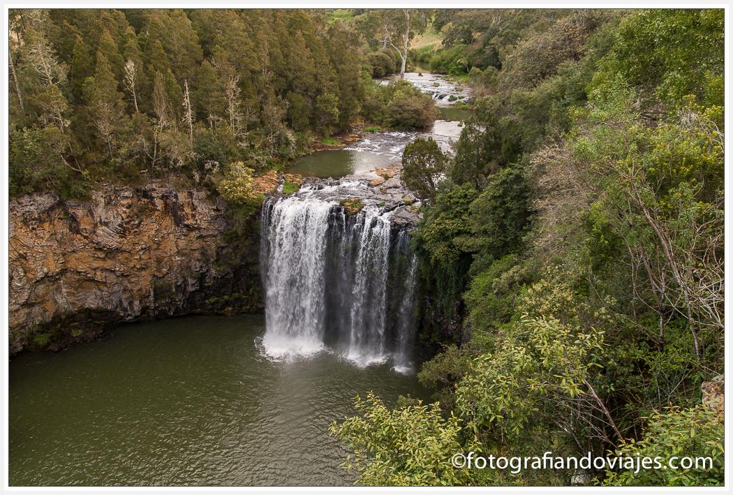 Dangar Falls cascadas Dorrigo Australia
