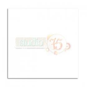 http://scrapkowo.pl/shop,karton-30x30-cm-10-szt-,1764.html