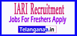 Indian Agricultural Research Institute IARI Recruitment Notification 2017 Last Date  04-04-2017