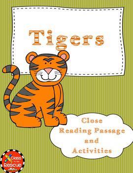 Tiger Close Reads
