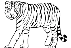 Catatanku Anak Desa Mewarnai Gambar Harimau Kartun