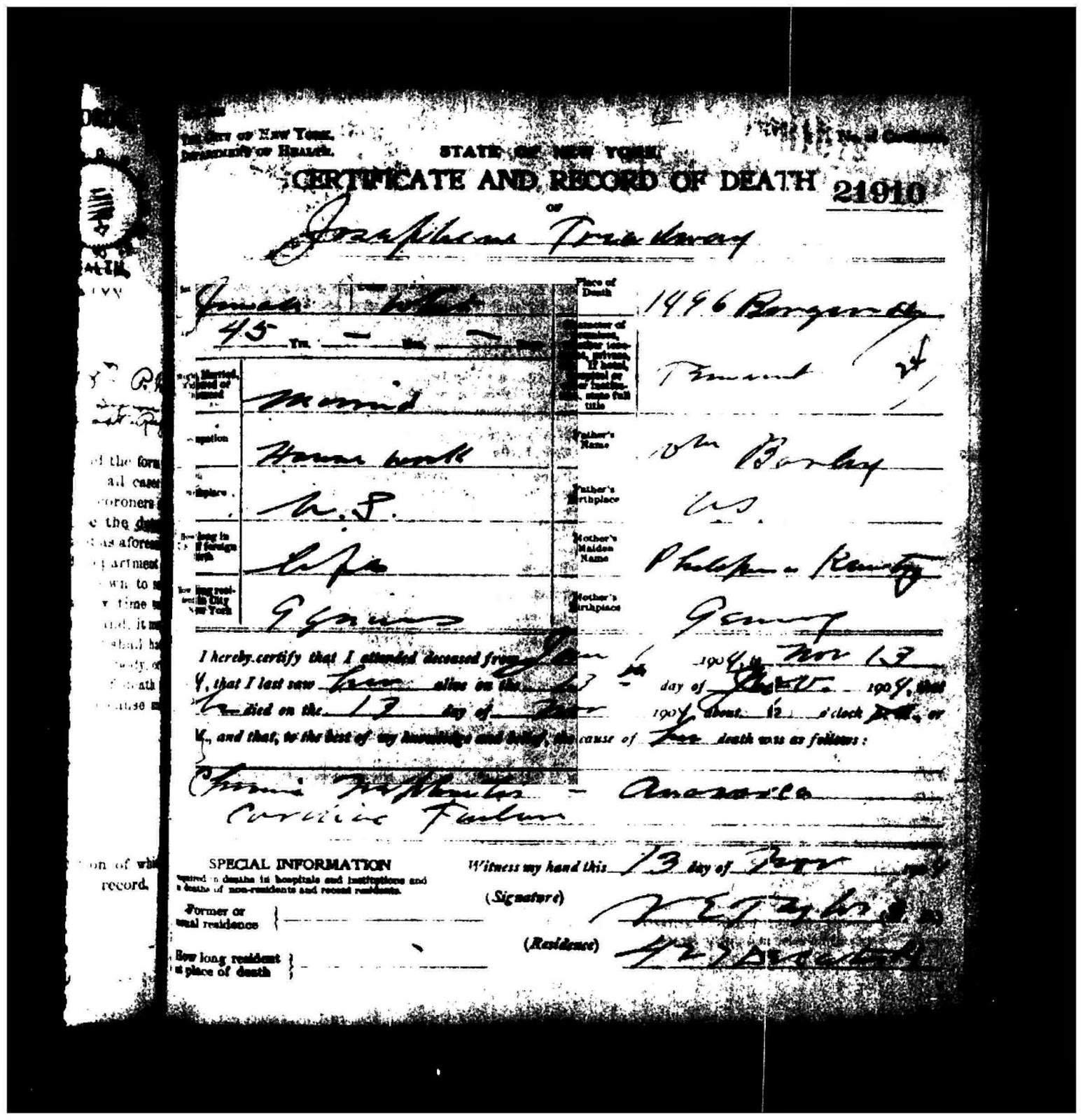 Allegheny County Birth Certificate Free Professional Resume