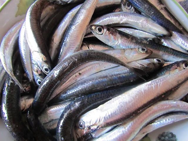 http://www.casacortella.it/2018/05/il-pesce-delladriatico-con-giorgia.html