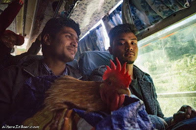the lady standing in the aisle just out of frame pawned this chicken-in-a-bag off on these guys, they didn't seem so stoked, overcrowded bus nepal rural mountain WhereIsBaer.com Chris Baer