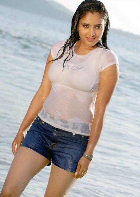 South Actress Spicy Photo 4