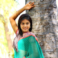 Radhika reddy stills in saree