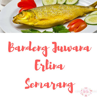 Pusat oleh-oleh Bandeng Juwana Erlina Semarang