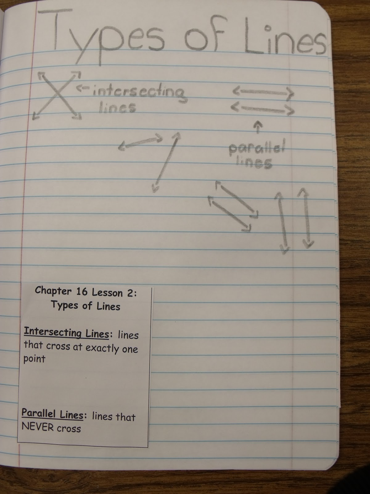 Dandelions And Dragonflies Interactive Notes