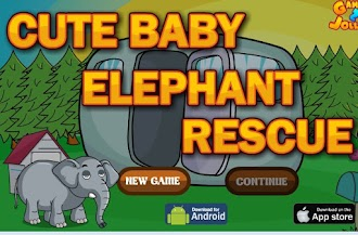 Cute Baby Elephant Rescue