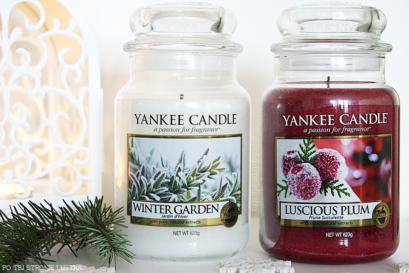 yankee candle winter garden i luscious plum