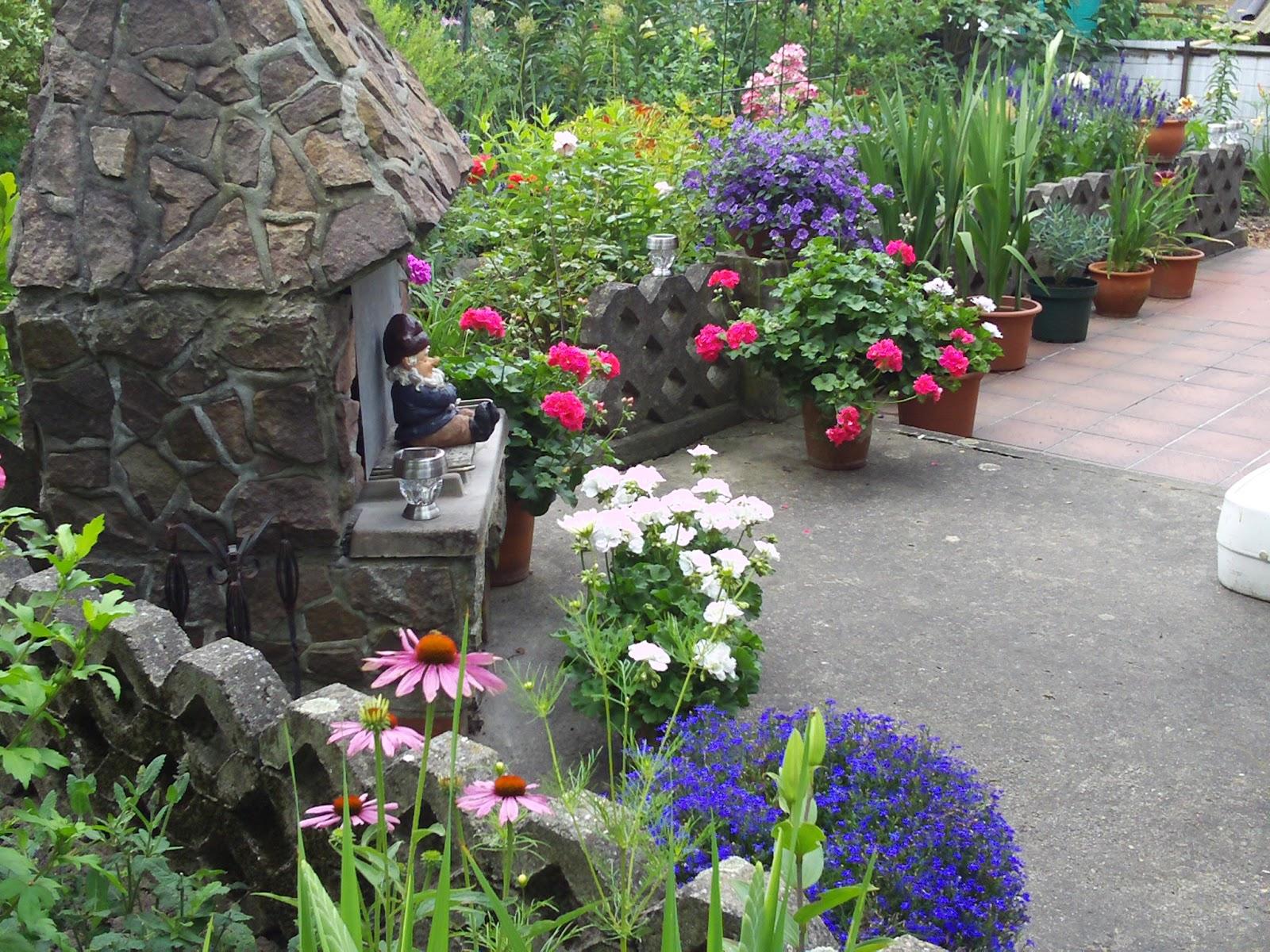 terrasse gestalten mit k belpflanzen gartenelfe. Black Bedroom Furniture Sets. Home Design Ideas